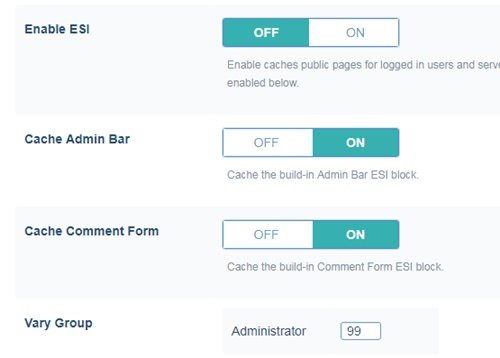 Cara Setting Plugin LiteSpeed Cache 19