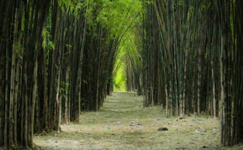 Tempat Wisata Di Surabaya Yang Legendaris Dan Terkenal