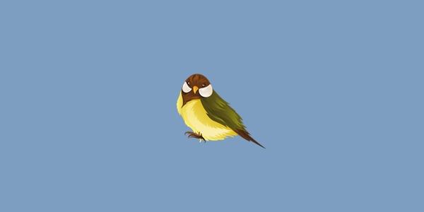 Penyebab, Ciri-ciri Burung Stres dan Cara Mengatasinya
