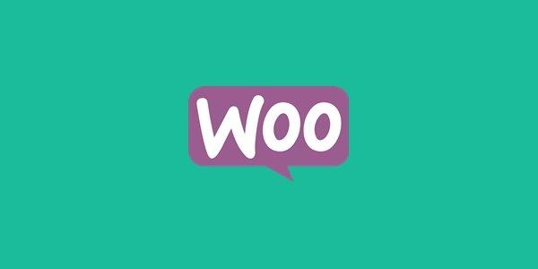 Plugin Yang Cocok Untuk WooCommerce